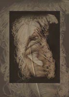 Nude and Feather Large limited edition prints by John Neville Cohen